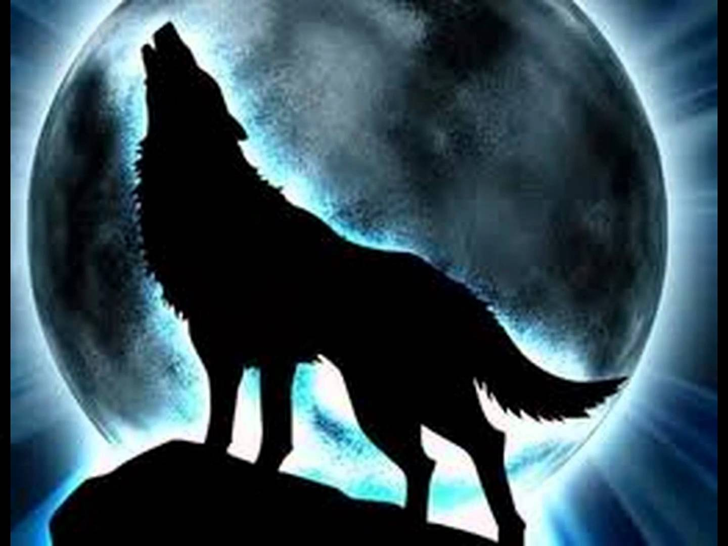 Howling Wolf Midnight Moon